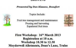 Apple Tree Growing Workshops