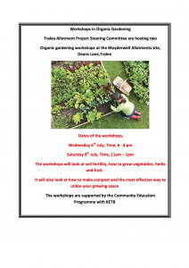 Workshops at allotments July 2016