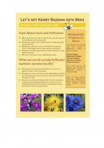 bees-flier-page-1